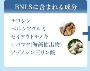 BNLS成分
